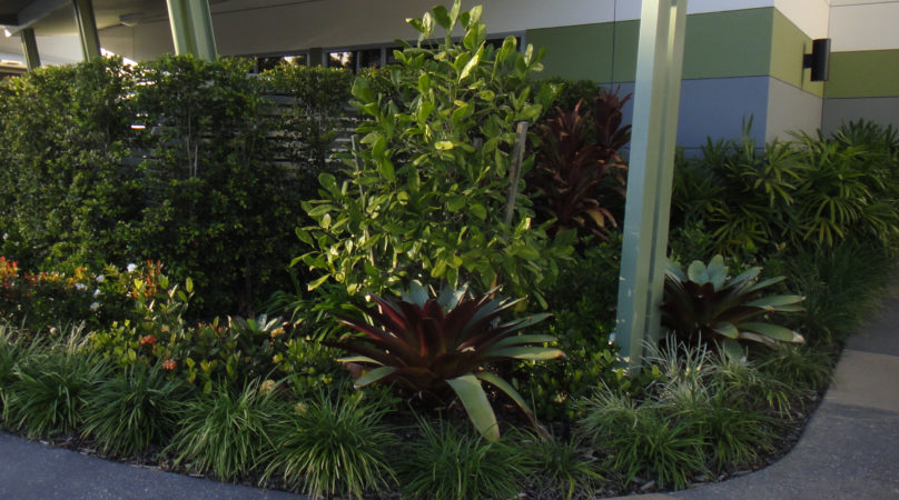 Commercial industrial landscape design sunshine coast for Landscape design sunshine coast