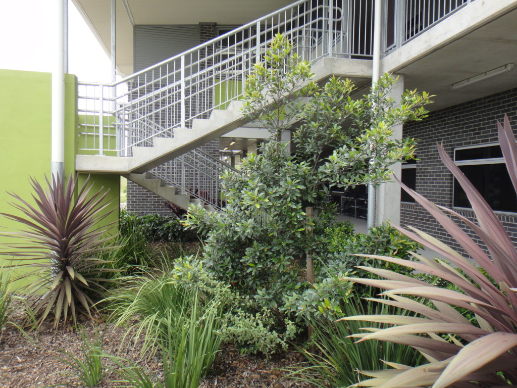 Educational element design landscape architecture for Landscape architecture courses brisbane