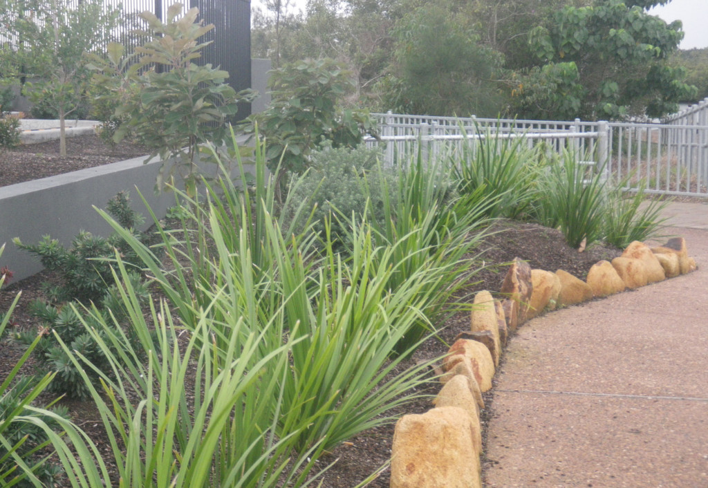 Garden Landscape Qld : Garden height were mitigated by using select dry stacked rock that