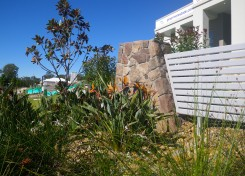 Landscape design development projects on the Sunshine Coast